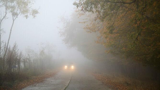 Mgły zanikają. Widzialność ograniczona od 100 m do 300 m