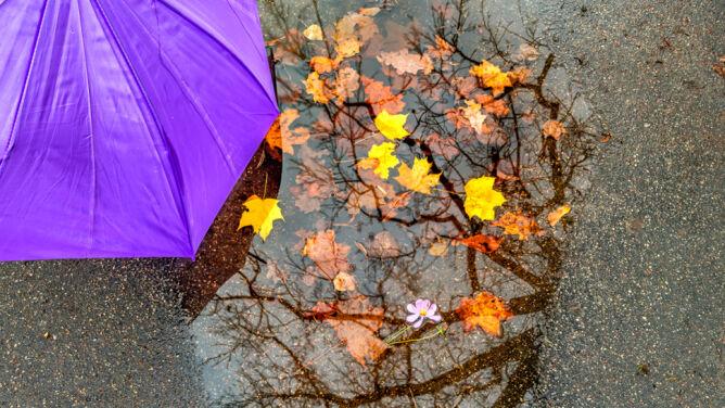 Prognoza pogody na długi weekend: intensywny deszcz. Maksymalnie 16 stopni