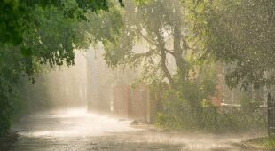 Maja Popielarska o pogodzie