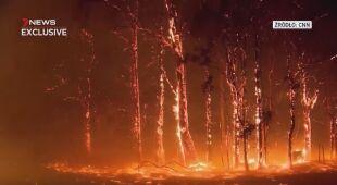 Pożary trawią Australię